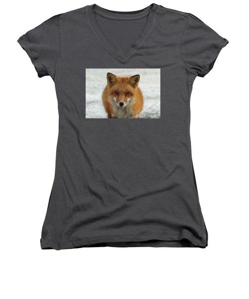 Red Fox Women's V-Neck T-Shirt