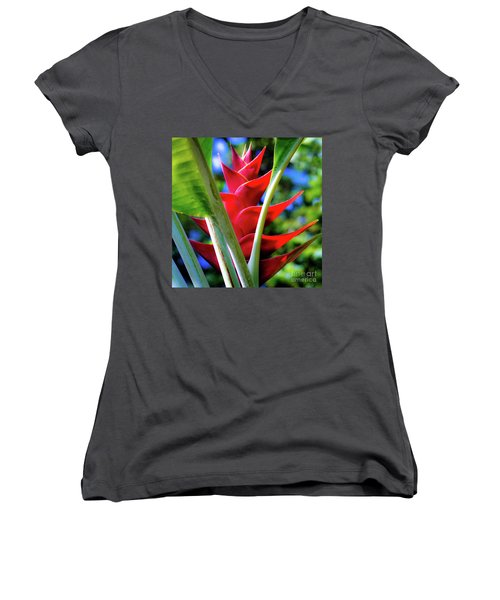 Red Heliconia Hawaii Women's V-Neck