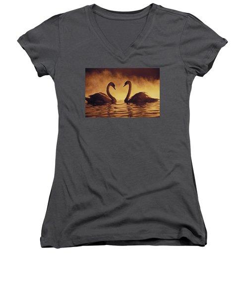 Romantic African Swans Women's V-Neck T-Shirt (Junior Cut) by Brent Black - Printscapes