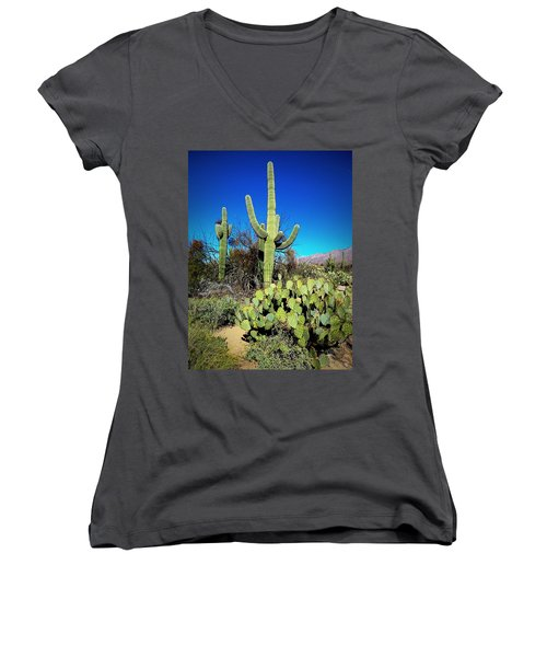 Sabino Canyon Women's V-Neck