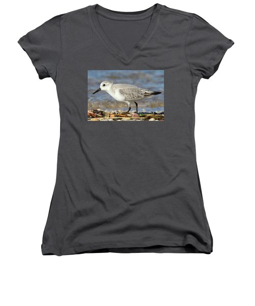 Sanderling Westhampton New York Women's V-Neck T-Shirt (Junior Cut) by Bob Savage