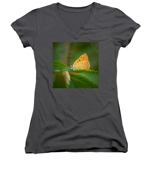 Women's V-Neck T-Shirt (Junior Cut) featuring the photograph Scarce Copper by Jouko Lehto