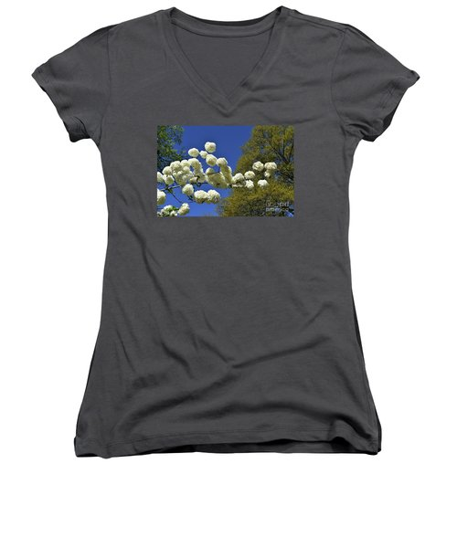 Women's V-Neck T-Shirt (Junior Cut) featuring the photograph Snowballs by Skip Willits