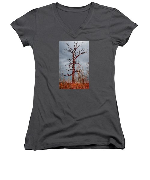 Ominous Women's V-Neck T-Shirt