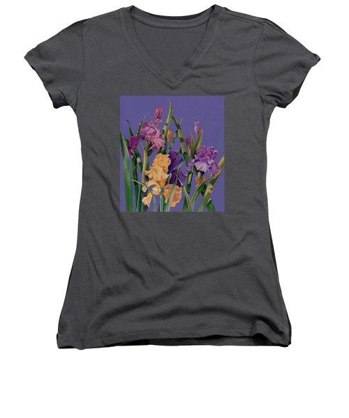 Spring Recital Women's V-Neck T-Shirt