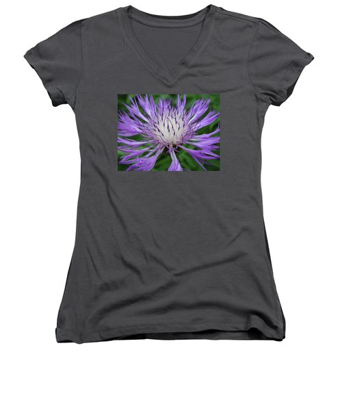 Summer Blooms Women's V-Neck T-Shirt (Junior Cut) by Rebecca Overton