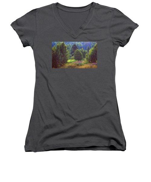 Summer Time Women's V-Neck T-Shirt (Junior Cut) by Vladimir Kholostykh