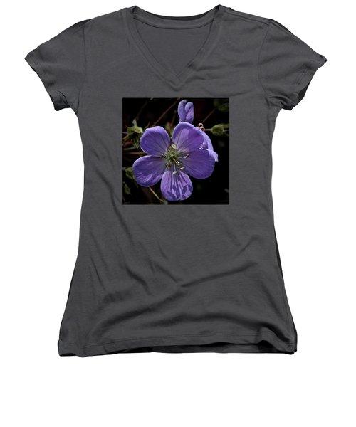 Sundial Women's V-Neck T-Shirt