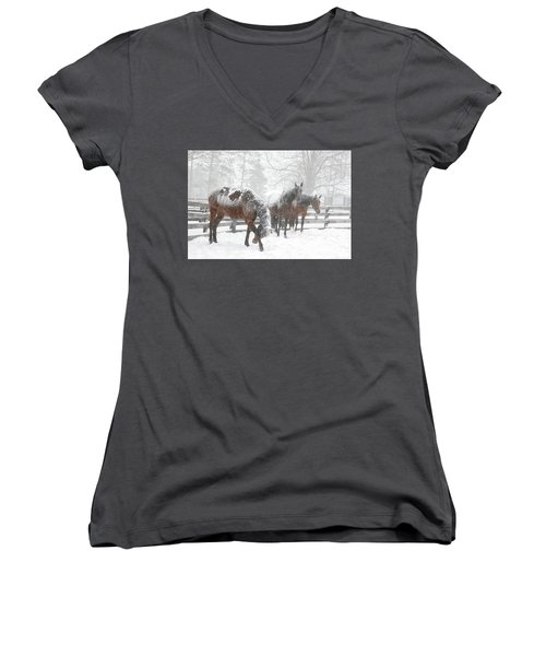 Tails To The Wind Women's V-Neck T-Shirt (Junior Cut) by Gary Hall