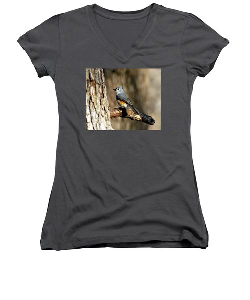 Tufted Titmouse On Branch Women's V-Neck T-Shirt (Junior Cut) by Sheila Brown