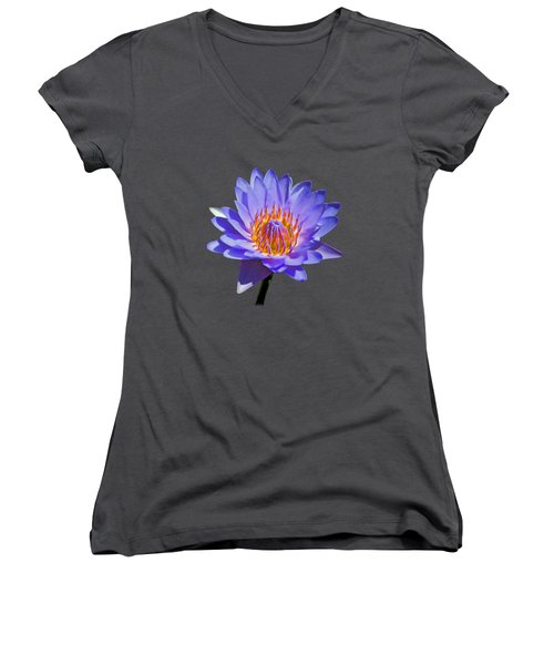 Water Lily Women's V-Neck T-Shirt (Junior Cut) by Pamela Walton