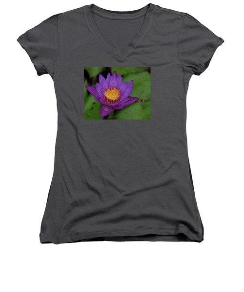 Water Lily Women's V-Neck T-Shirt (Junior Cut) by Ronda Ryan
