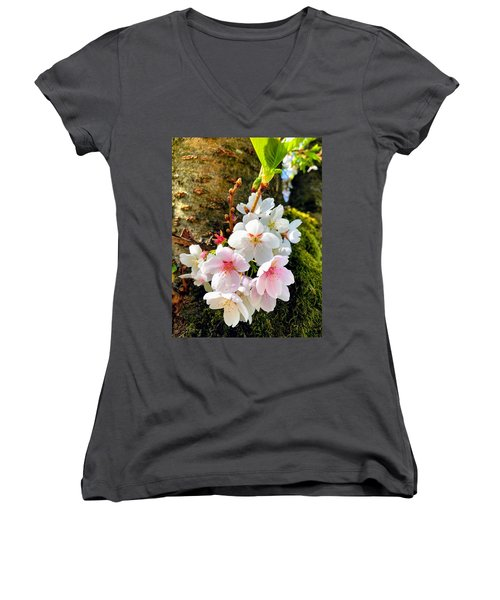 White Apple Blossom In Spring Women's V-Neck