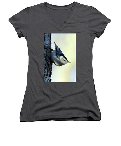 White Breasted Nuthatch Wading River New York Women's V-Neck T-Shirt (Junior Cut) by Bob Savage