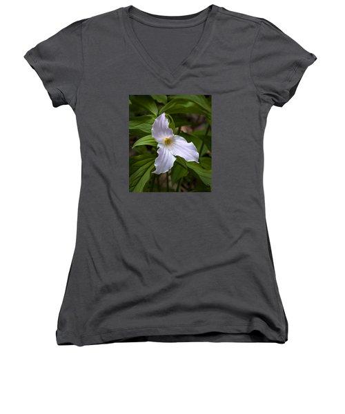 White Trillium Women's V-Neck T-Shirt