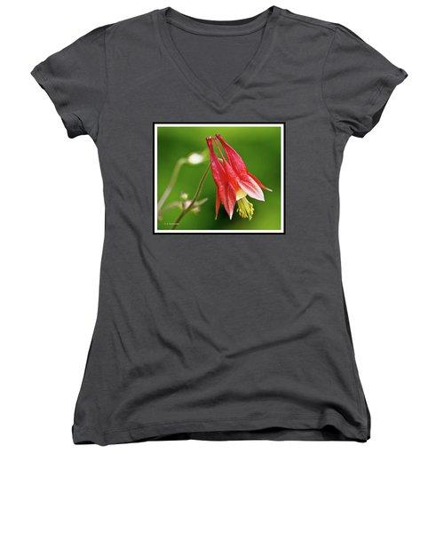 Wild Columbine Flower Women's V-Neck T-Shirt (Junior Cut) by A Gurmankin