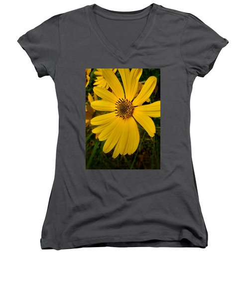 Wild Yellow Women's V-Neck (Athletic Fit)