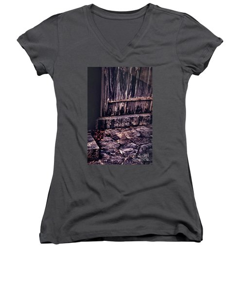 Wood And Stone Women's V-Neck (Athletic Fit)