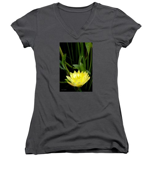 Women's V-Neck T-Shirt (Junior Cut) featuring the photograph Yellow Lotus by Debra     Vatalaro