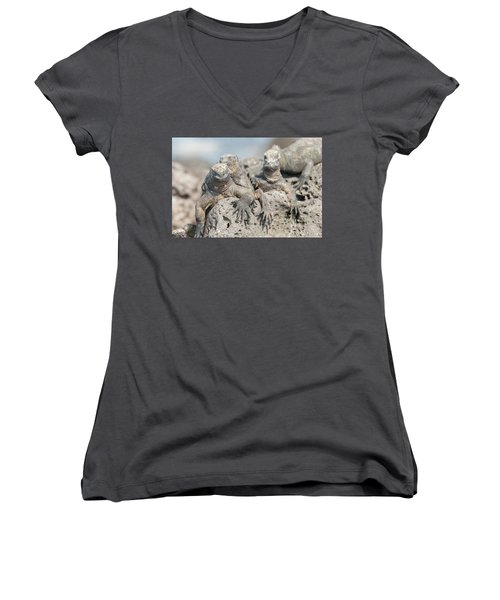Marine Iguana On Galapagos Islands Women's V-Neck T-Shirt (Junior Cut) by Marek Poplawski