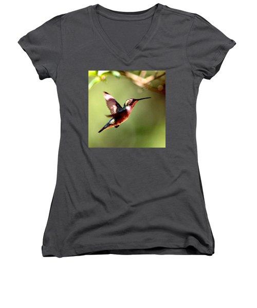 103456 - Ruby-throated Hummingbird Women's V-Neck T-Shirt (Junior Cut) by Travis Truelove