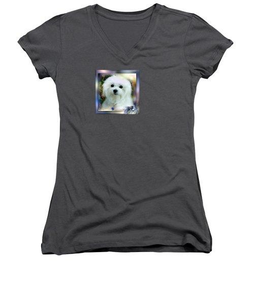 Hermes The Maltese Women's V-Neck T-Shirt (Junior Cut) by Morag Bates