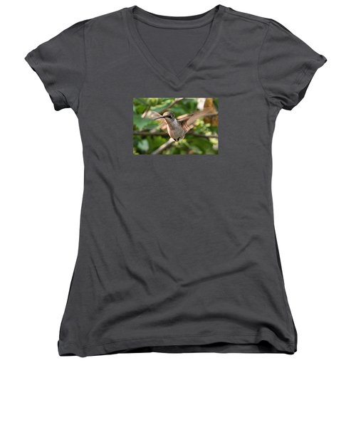 Hummingbird Women's V-Neck T-Shirt (Junior Cut) by John Freidenberg