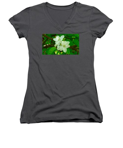Women's V-Neck T-Shirt (Junior Cut) featuring the painting Apple Blossoms by Johanna Bruwer
