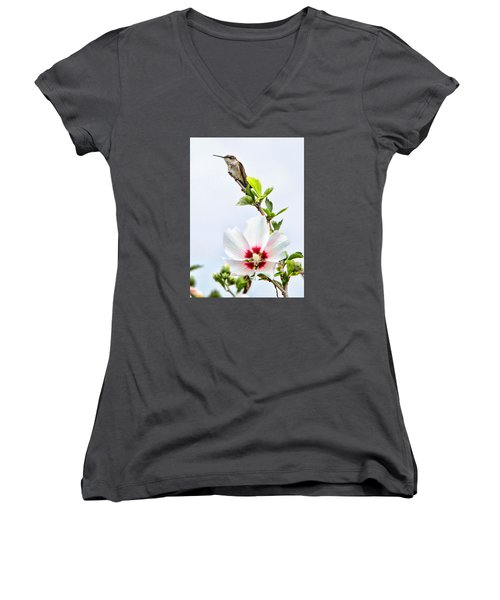 Hummingbird Women's V-Neck (Athletic Fit)