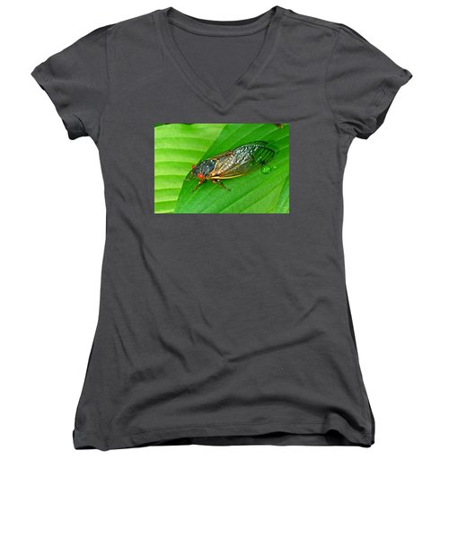 17 Year Periodical Cicada Women's V-Neck (Athletic Fit)