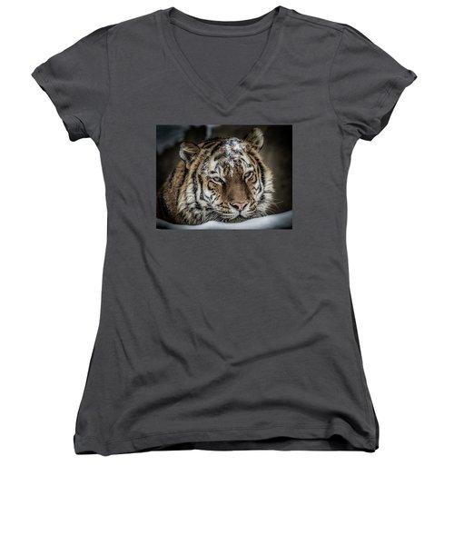 Amur Tiger Women's V-Neck