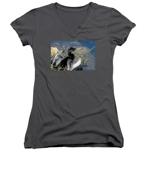 Anhiinga Women's V-Neck T-Shirt