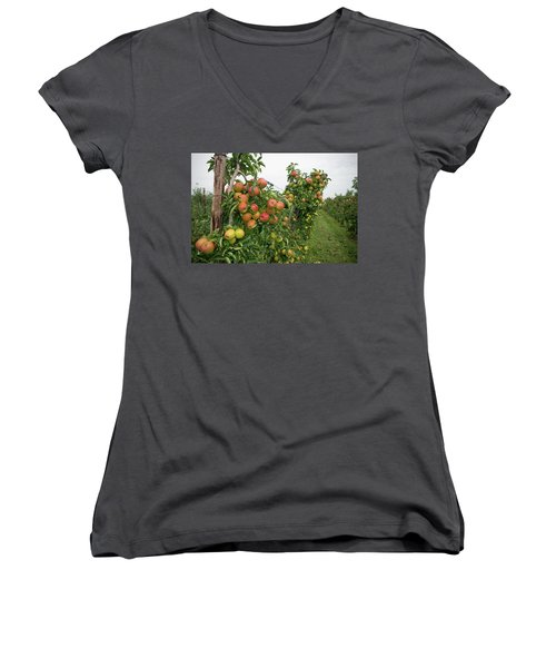 Women's V-Neck T-Shirt (Junior Cut) featuring the photograph Apple Orchard by Hans Engbers