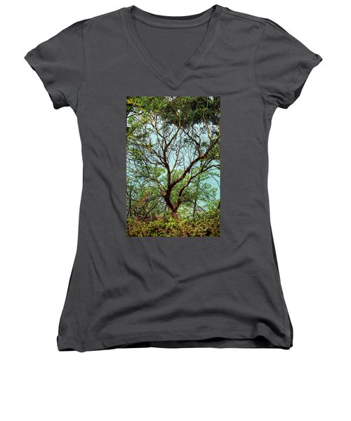 Arbutus Tree Women's V-Neck