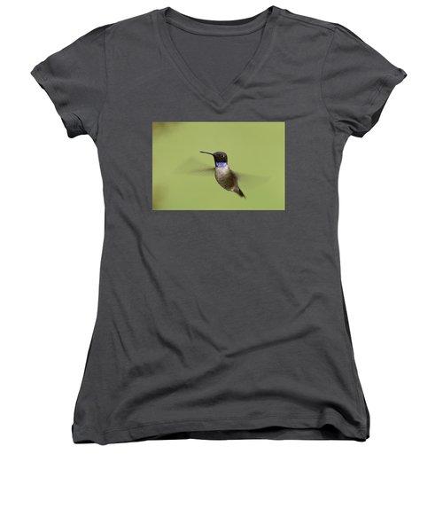 Black-chinned Hummingbird Women's V-Neck T-Shirt (Junior Cut) by Doug Herr