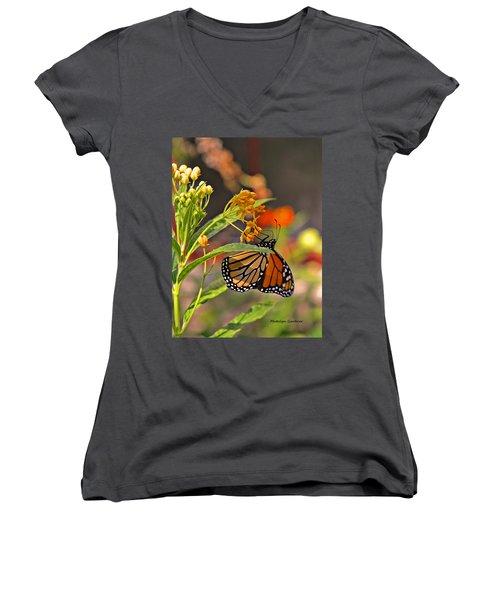 Clinging Butterfly Women's V-Neck