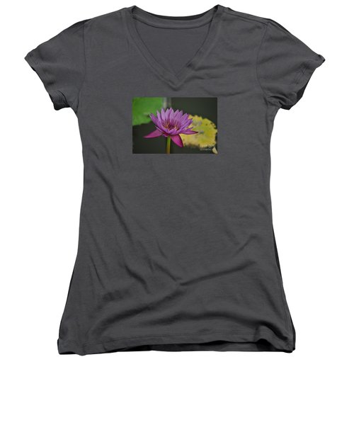 Delight Women's V-Neck (Athletic Fit)