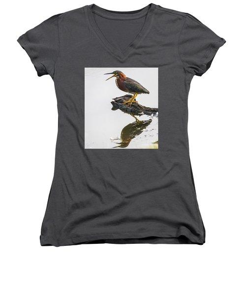 Green Heron Women's V-Neck