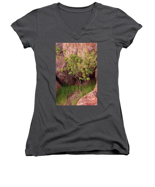 Hidden Women's V-Neck T-Shirt (Junior Cut) by Iris Greenwell