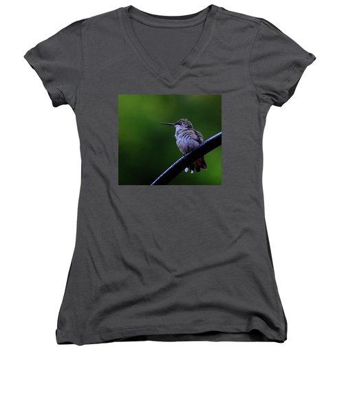 Hummingbird Portrait Women's V-Neck T-Shirt (Junior Cut) by Ronda Ryan