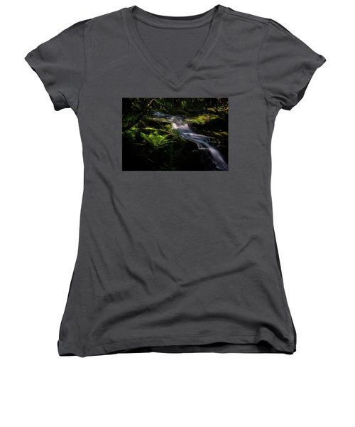 Lynn Mill Waterfalls Women's V-Neck (Athletic Fit)