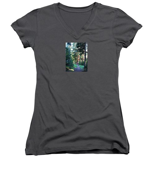 On A Hike Women's V-Neck T-Shirt (Junior Cut) by Michele Penner