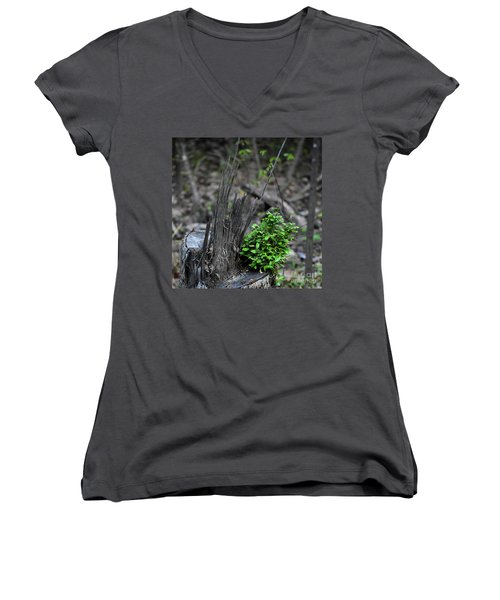 Women's V-Neck T-Shirt (Junior Cut) featuring the photograph Persistence by Skip Willits