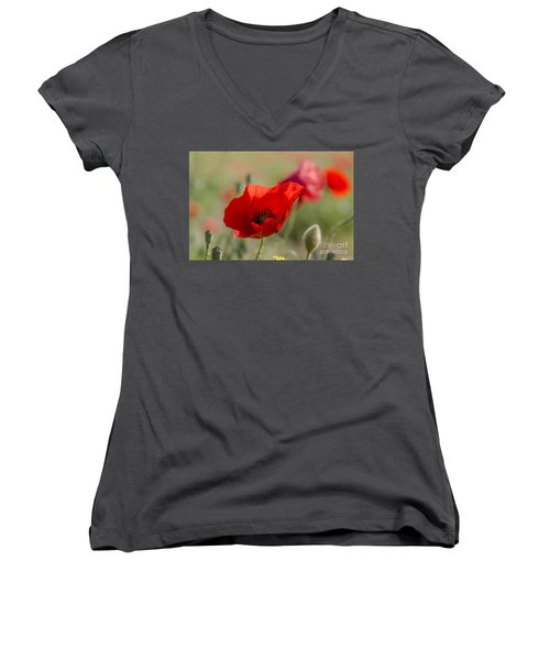 Poppies In Field In Spring Women's V-Neck (Athletic Fit)