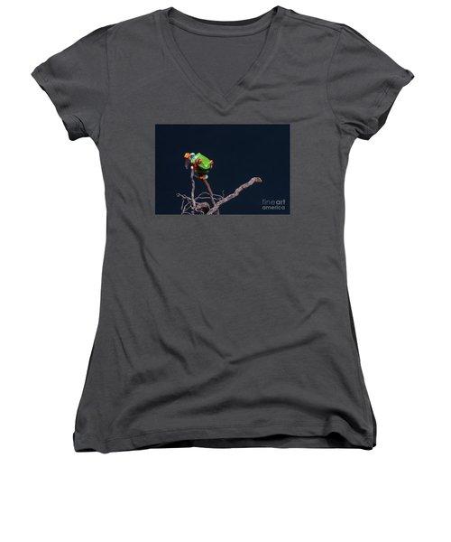 Red Eyed Tree Frog Women's V-Neck