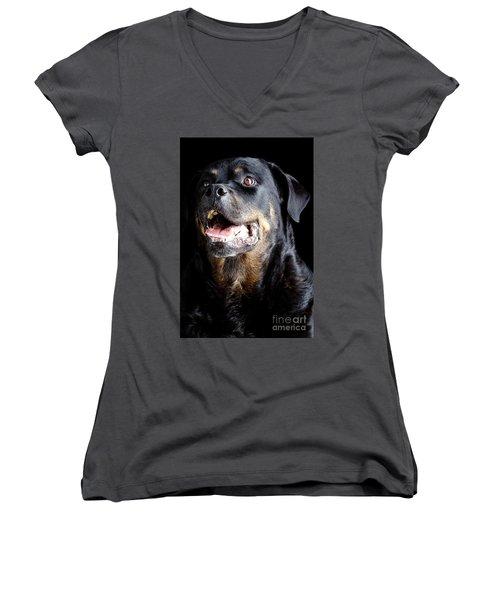Rottweiler Dog Women's V-Neck (Athletic Fit)