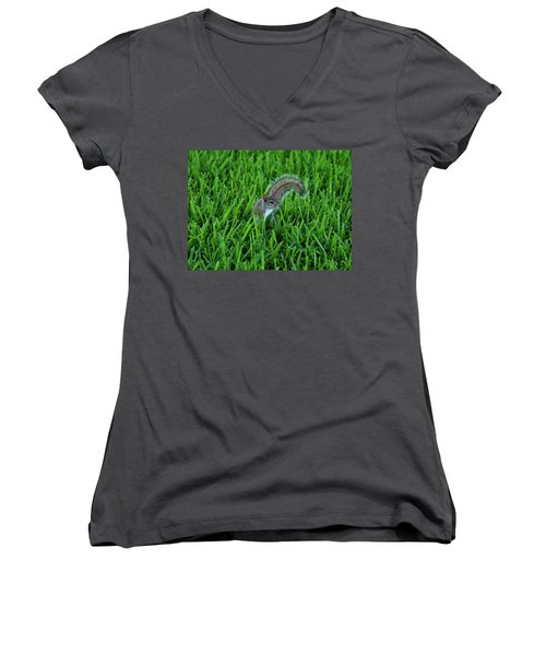 Women's V-Neck T-Shirt (Junior Cut) featuring the photograph 2- Squirrel by Joseph Keane