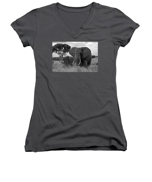 The Old Bull Women's V-Neck (Athletic Fit)