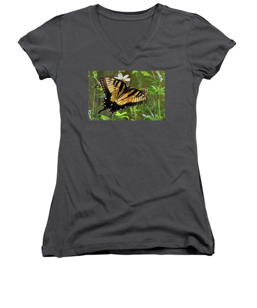 Tiger Swallowtail Women's V-Neck (Athletic Fit)