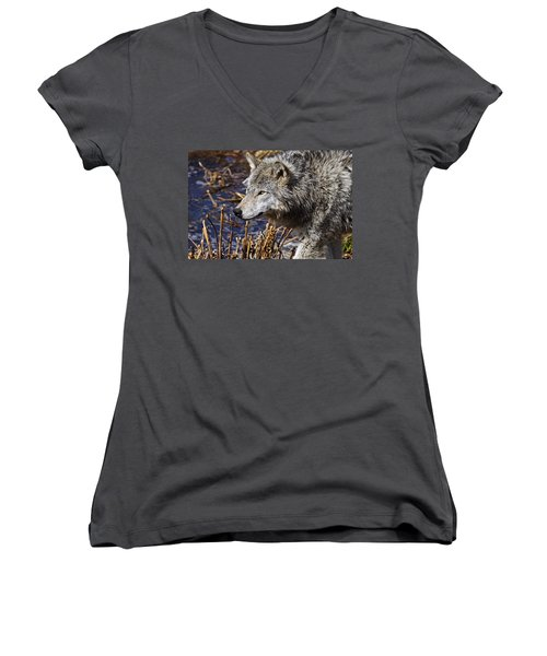 Women's V-Neck T-Shirt (Junior Cut) featuring the photograph Timber Wolf by Michael Cummings